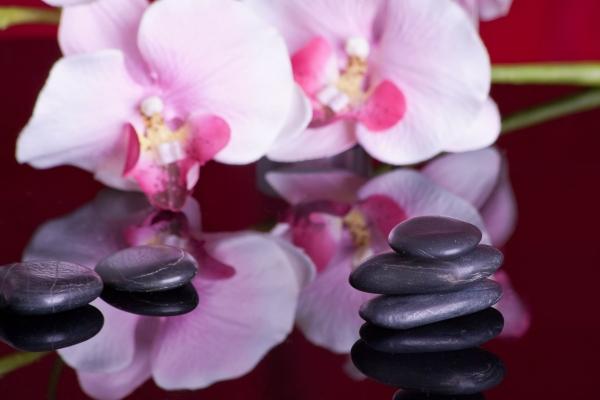 massage-599476_1920